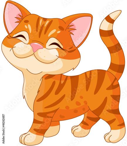 Cadres-photo bureau Chats Cute Kitten