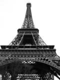 Wieża Eiffla - 46273049