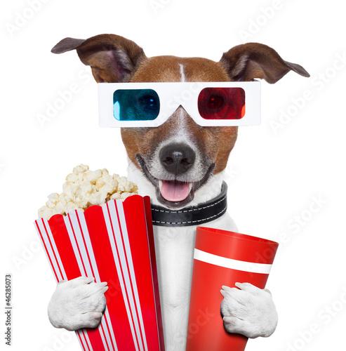 Fototapety, obrazy: 3d glasses movie popcorn dog