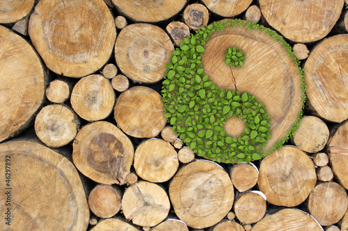 Photo Stacked Logs Background with ying yang symbol