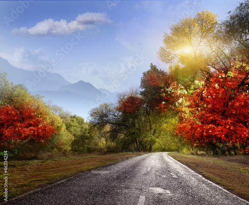 Foto op Canvas Herfst Road, asphalt, autumn