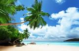 Fototapeta Krajobraz - beach on Mahe island in Seychelles