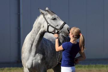 Siwy koń prosi dżokeja, dziewczynę o smaczne jabłko.