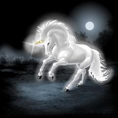Obraz na płótnie Canvas unicorno