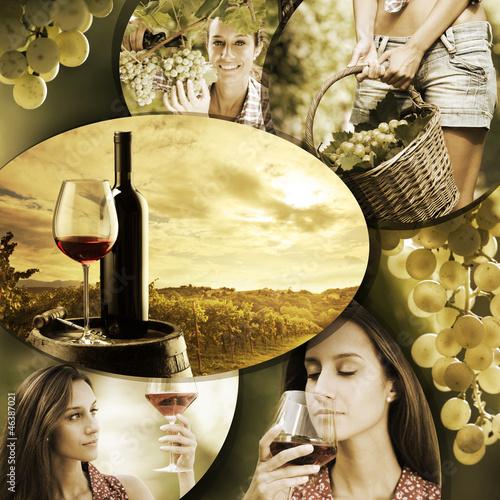 Papiers peints Vignoble Wine and vineyard