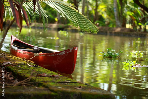 Palm tree tropical forest in backwater of Kochin, Kerala, India Canvas Print