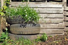 Recycled Car Tyre Garden Flower Planter