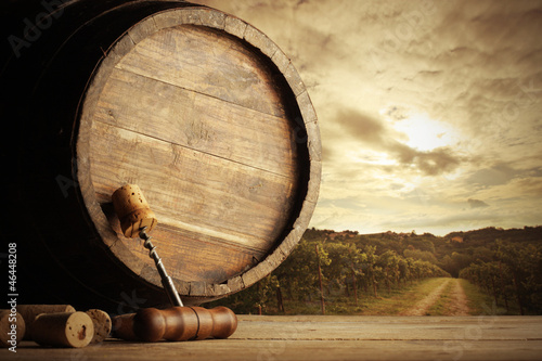 Cuadros en Lienzo Vineyard and barrel