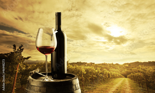 Spoed Foto op Canvas Wijngaard Vineyard at sunset