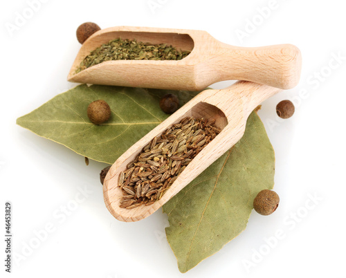 wooden shovels with spices on bay leaves isolated on white