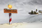 The North Pole - 46493852