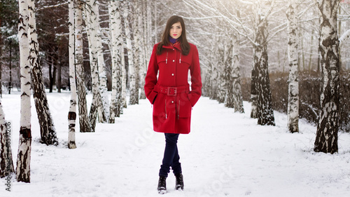 Fotografie, Tablou  Beautiful elegant woman in red coat