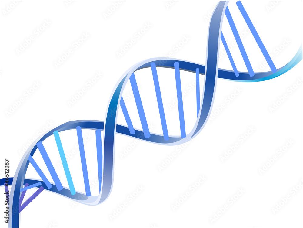 Fototapeta DNA
