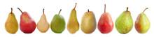 Varieties Of Pears