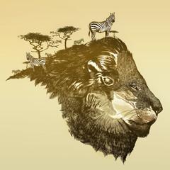 Fototapeta Lew Lion of savanna