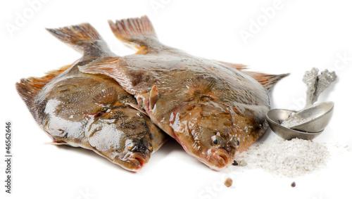 Leinwand Poster Flounder with salt