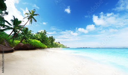 Poster Tropical plage beach in sunset time on Mahe island in Seychelles