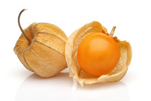 Two Physalis