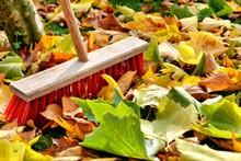 Sweeping Leaves