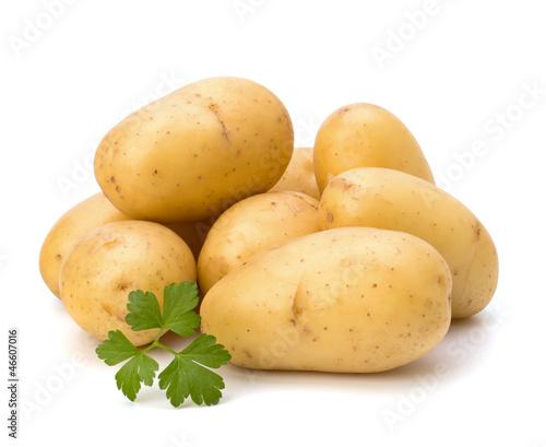 Fotografie, Obraz New potato and green parsley