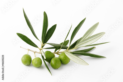 Olive verdi e ramoscelli - Olive green and twigs