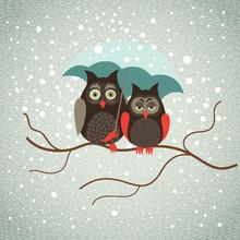 Two Cute Owls In Snowfall
