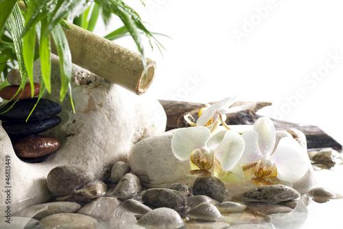 orchidee-i-zen-kamienie-na-wodnym-zdroju-pojeciu-na-bialym-tle