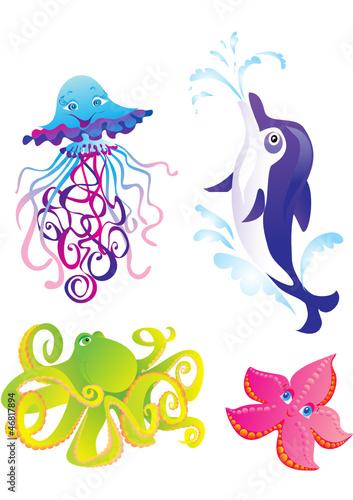 Poster Dolfijnen Cartoon sea animals isolated on a white