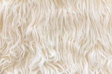 Close Up Of Sheepskin Texture ...