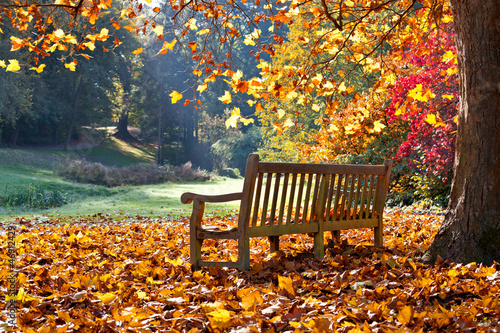 Poster Marron chocolat Bench in autumn park.