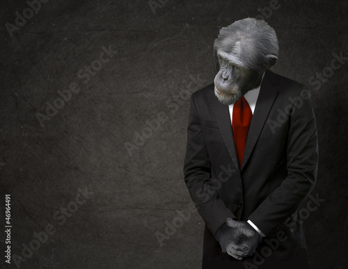 Foto op Plexiglas Aap Business Monkey In Formal Attire
