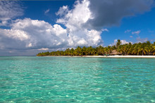 Beautiful Caribbean Beach On S...
