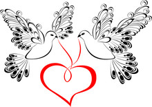 Two Flying Dove With Heart Shaped