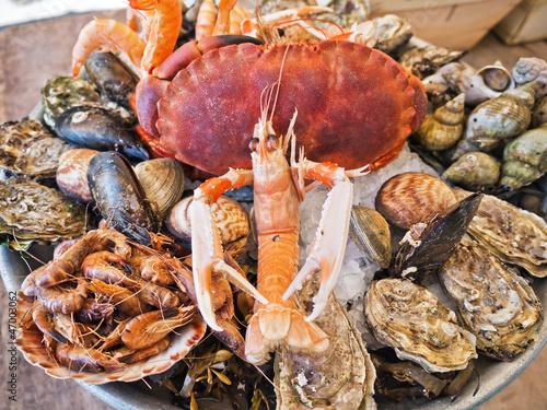 Garden Poster Seafoods Meeresfrüchteteller