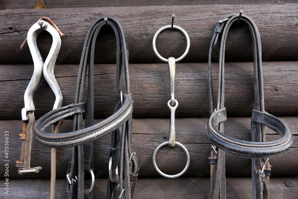 Fototapeta Details of diversity used horse reins