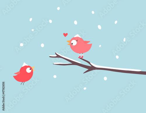 Photo sur Toile Bleu clair Lovely birds with snow