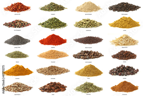 Fotografía  Different spices isolated on white background. Large Image