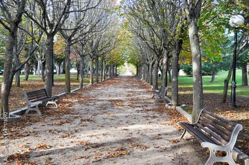Castillo park, Soria (Spain)