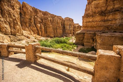 Poster Tunesië Canyon in the oasis of Tamerza, Tunisia