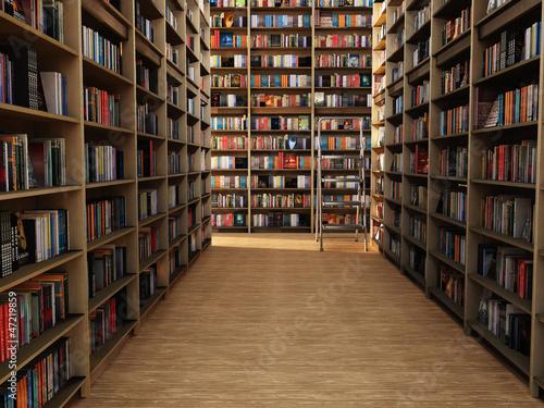 Fotografie, Obraz  books in library