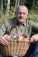 The Man With Basket Of Mushrooms