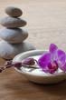 ayurveda feng-shui wellbeing
