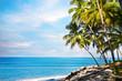 Ocean tropical view