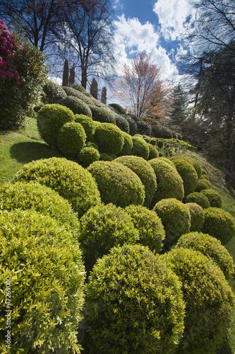 Cadres-photo bureau Jardin giardino