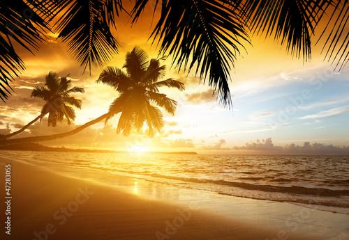 Foto Rollo Basic - sunset on the beach of caribbean sea