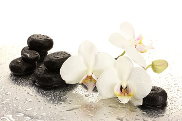 Obraz na SzkleSpa stones and orchid flowers, isolated on white.