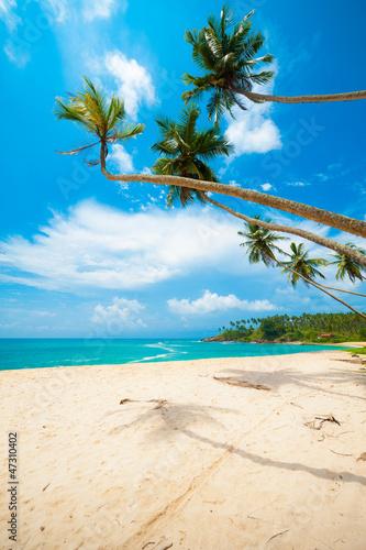 Foto-Schiebegardine Komplettsystem - Tropical beach (von Anton Gvozdikov)