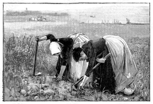 Photo Women : Peasants - Paysannes - 19th century