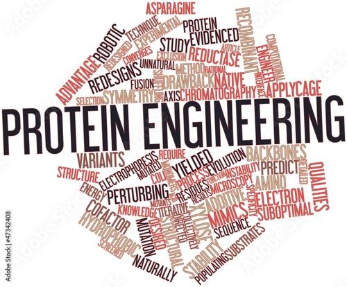 Word cloud for Protein engineering Wallpaper Mural