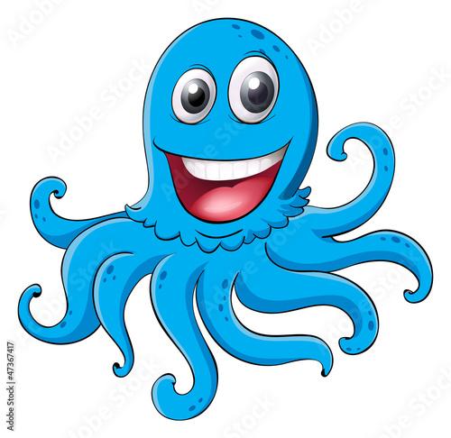 Fotografie, Obraz  an octopus
